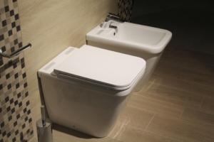 Dusch WC installieren